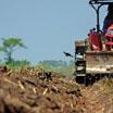 Profesión peón ganadero, agropecuario o agricultor